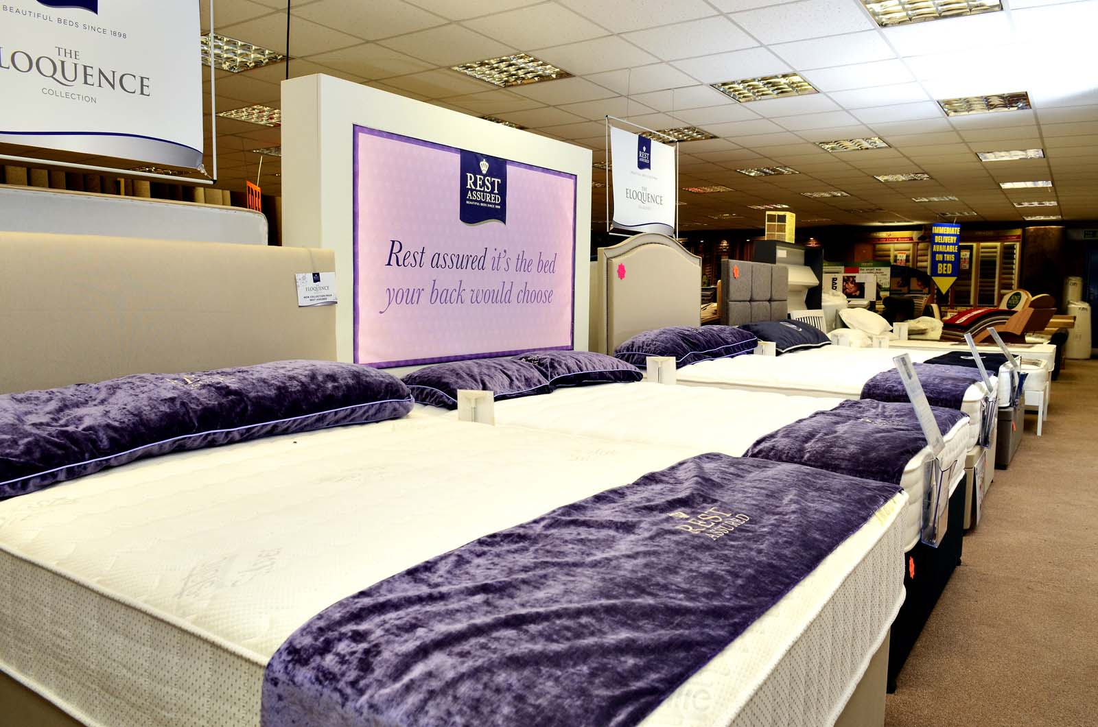 carpet smart bed shop
